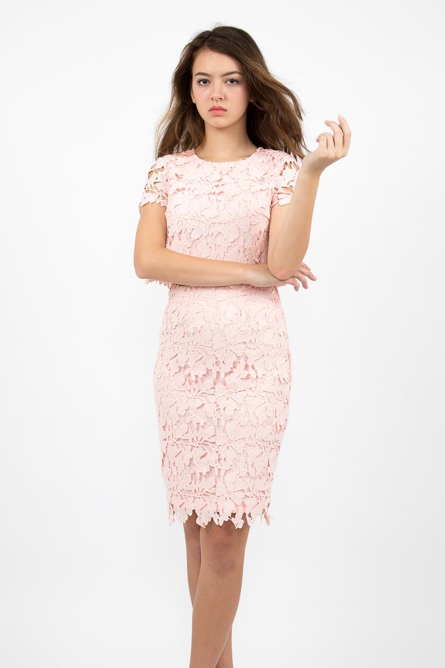 Lara Crochet Top - Blush Pink